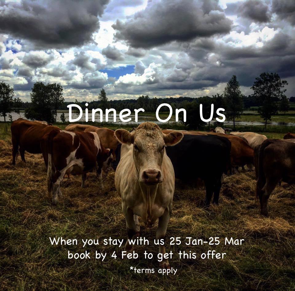 Dinner On Us